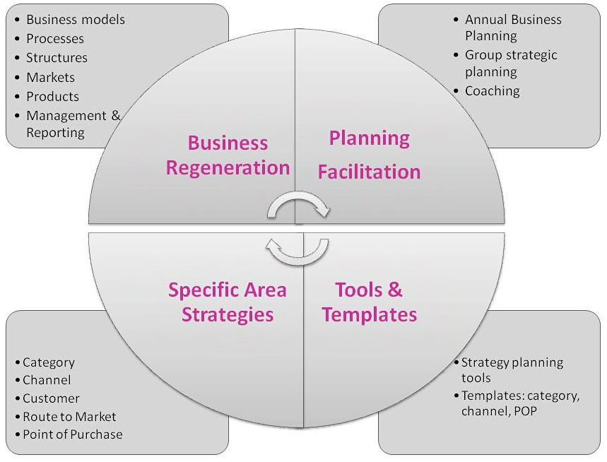 business-strategy-scope5