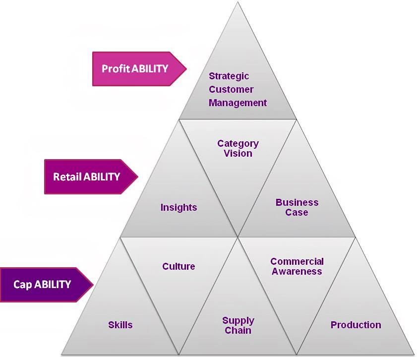 fmcg-capability-pyramid